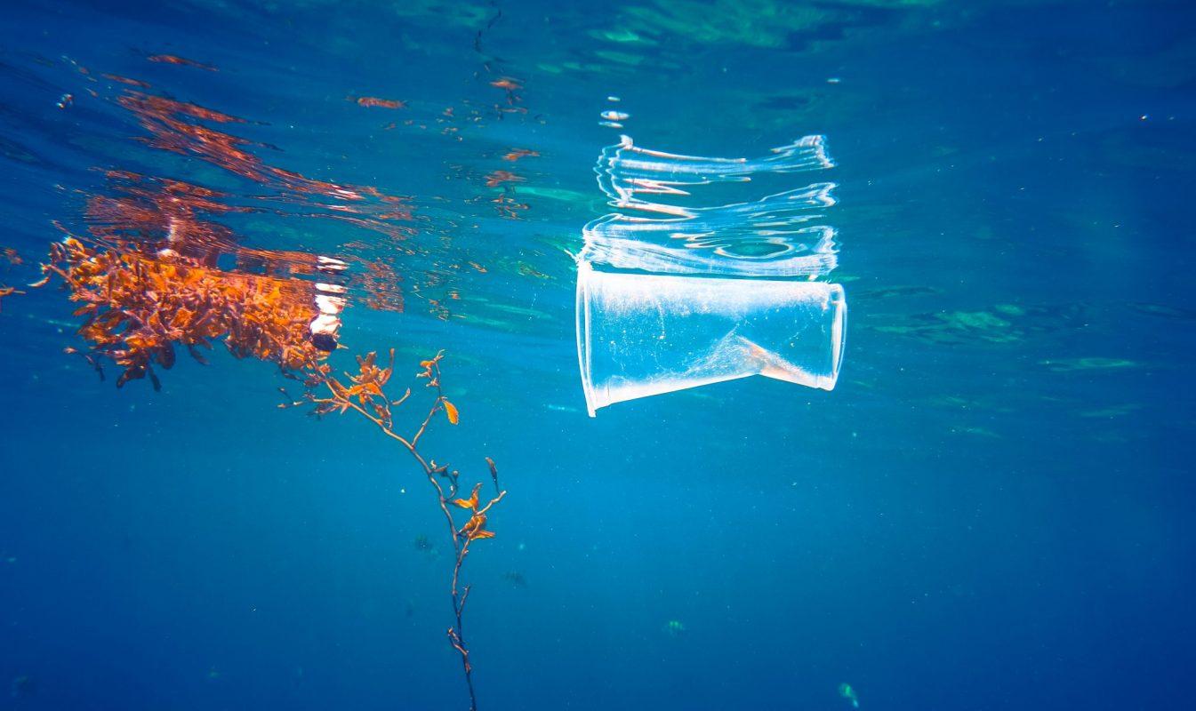 Plastic floating in the ocean