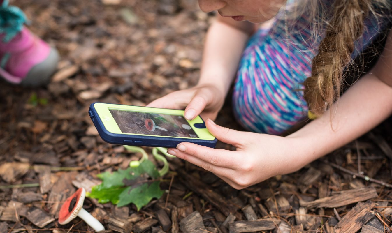 Young ecoEXPLOREr uses a smartphone to photograph a toadstool